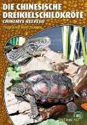 Die Chinesische Dreikielschildkröte