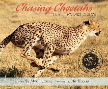 Chasing Cheetahs