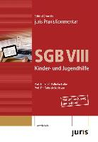 juris PraxisKommentar SGB VIII