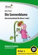 Die Sonnenblume. Grundschule, Sachunterricht, Klasse 1-2