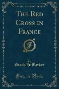 The Red Cross in France (Classic Reprint)
