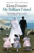 MY BRILLIANT FRIEND -LP