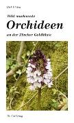 Wild wachsende Orchideen an der Zürcher Goldküste