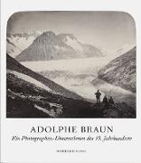Adolphe Braun - Ein Photographie-Unternehmen und die Bildkünste im 19. Jahrhundert