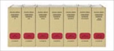 Grundgesetz Leinen-Hauptordner II 72 mm