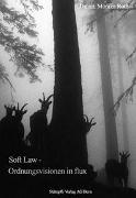 Soft Law - Ordnungsvisionen in flux