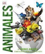 Animales: El reino animal como nunca antes lo habías visto con increíbles ilustraciones en 3D