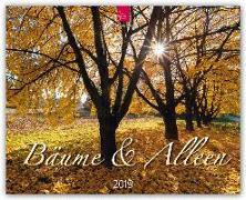 Bäume & Alleen 2019