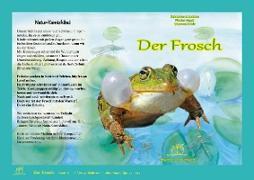 Der Frosch. Natur-Kamishibai