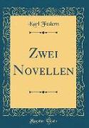 Zwei Novellen (Classic Reprint)
