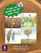 From an Acorn to an Oak Tree Info Trail Emergent Stage Non-fiction Book 23