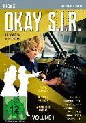 Okay S.I.R. - Vol. 1