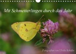 Mit Schmetterlingen durch das Jahr (Wandkalender 2019 DIN A4 quer)