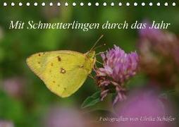 Mit Schmetterlingen durch das Jahr (Tischkalender 2019 DIN A5 quer)