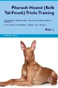 Pharaoh Hound (Kelb Tal-Fenek) Tricks Training Pharaoh Hound (Kelb Tal-Fenek) Tricks & Games Training Tracker & Workbook. Includes