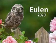 Eulen Kalender 2020