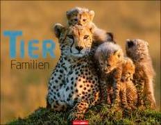 Tierfamilien Kalender 2020