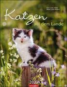 Katzen auf dem Lande Kalender 2020