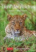 Tiere der Wildnis Kalender 2020