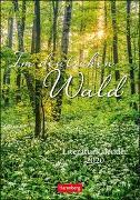 Im deutschen Wald Kalender 2020