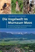 Die Vogelwelt im Murnauer Moos