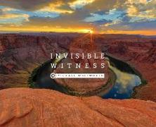 Invisible Witness