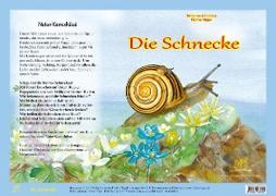 Naturkamishibai - Die Schnecke