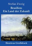 Brasilien: Ein Land der Zukunft (Großdruck)