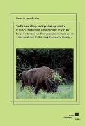 Self-regulating ecosystem dynamics in future wilderness development driven by large herbivore-wildfire-vegetation interactions - and relations to the megaherbivore theory -