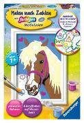 Malen nach Zahlen Liebes Pferd