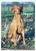 Magyar Vizsla (Wandkalender 2020 DIN A2 hoch)