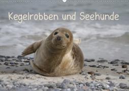 Kegelrobben und Seehunde (Wandkalender 2020 DIN A2 quer)