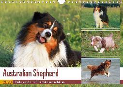 Australian Shepherd - Hütehunde mit Familienanschluss (Wandkalender 2020 DIN A4 quer)