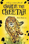 A Day In The Life Of Charlie The Cheetah