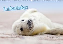 Robbenbabys (Wandkalender 2020 DIN A2 quer)