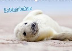 Robbenbabys (Wandkalender 2020 DIN A3 quer)