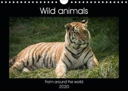 Wild animals from around the world (Wall Calendar 2020 DIN A4 Landscape)