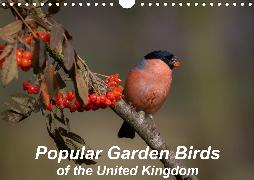 Popular garden birds of the united kingdom (Wall Calendar 2020 DIN A4 Landscape)