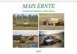 MAIS ERNTE (Wandkalender 2020 DIN A4 quer)