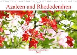 Azaleen und Rhododendren Blütenbilder (Wandkalender 2020 DIN A4 quer)