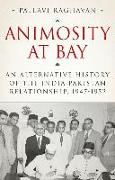 Animosity at Bay: An Alternative History of the India-Pakistan Relationship, 1947-1952