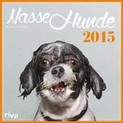 Nasse Hunde 2015