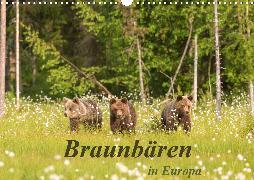 Braunbären in Europa (Wandkalender 2020 DIN A3 quer)