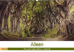 Alleen - Die schönsten Alleen weltweit (Wandkalender 2020 DIN A2 quer)