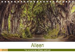 Alleen - Die schönsten Alleen weltweit (Tischkalender 2020 DIN A5 quer)