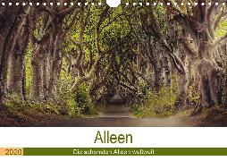 Alleen - Die schönsten Alleen weltweit (Wandkalender 2020 DIN A4 quer)