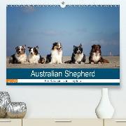 Australian Shepherd 2020 (Premium-Kalender 2020 DIN A2 quer)(Premium, hochwertiger DIN A2 Wandkalender 2020, Kunstdruck in Hochglanz)