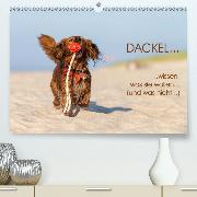 DACKEL... wissen was sie wollen... (und was nicht...)(Premium, hochwertiger DIN A2 Wandkalender 2020, Kunstdruck in Hochglanz)