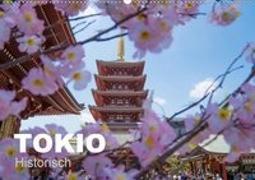 Tokio Kalender mit historischen Tempeln und Schreinen (Wandkalender 2020 DIN A2 quer)