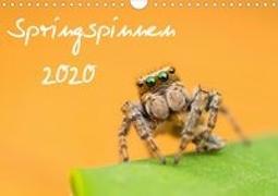 Springspinnen Kalender 2020 (Wandkalender 2020 DIN A4 quer)